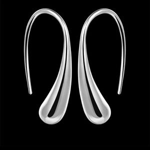 Sterling Silver Hook Drop Earrings